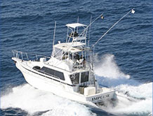 Impulse Sportfishing Charters