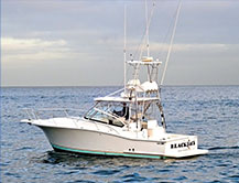 Blackjack Sportfishing Charters